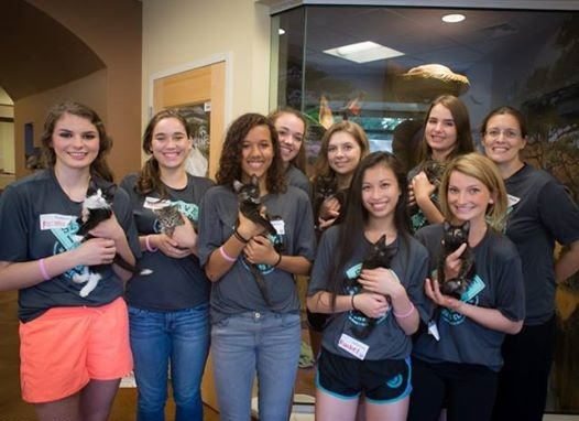 Volleyball teams unite in service at the Front Street Animal Shelter.